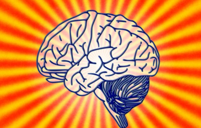 Illustratin Gehirn