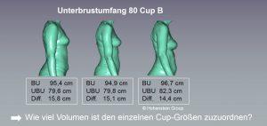 Wie viel Volumen ist den einzelnen Cup-Größen zuzuordnen?