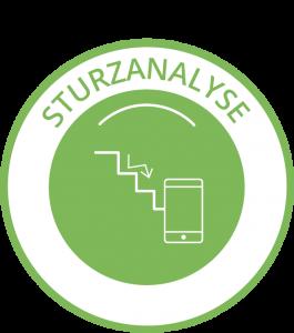 Icon Sturzanalyse